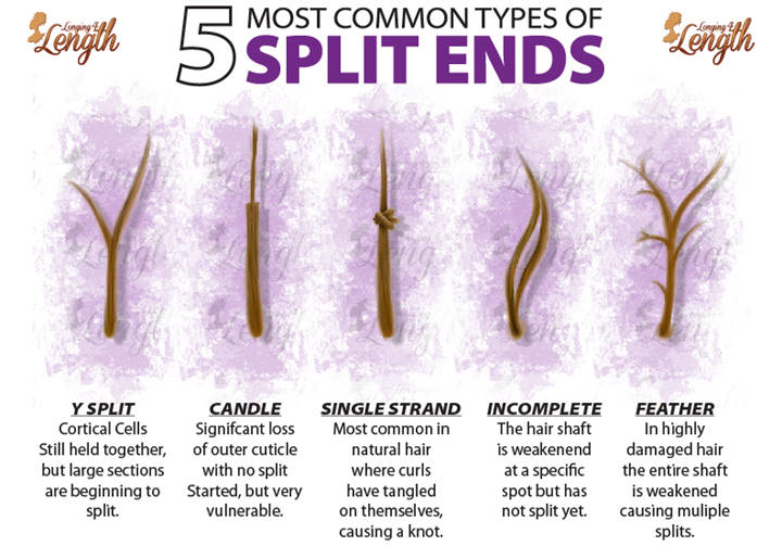 Split End Types Hair Split Ends Most Common Types Of